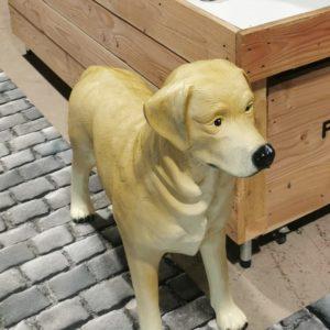 statue chien 70cm
